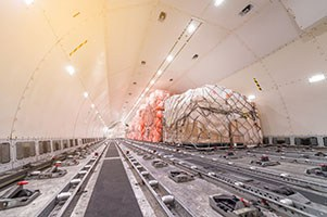 Cargo pallets being loaded into cargo plane.